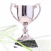 the-award-cup1
